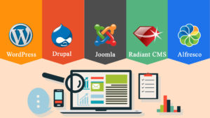 E-COMMERCE STAGE AND WEBSITE CMS